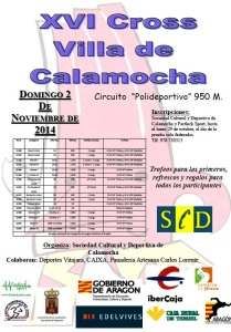 Cartel Calamocha 2014